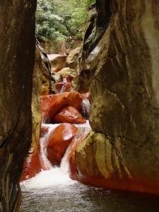 canyon-dacomat4